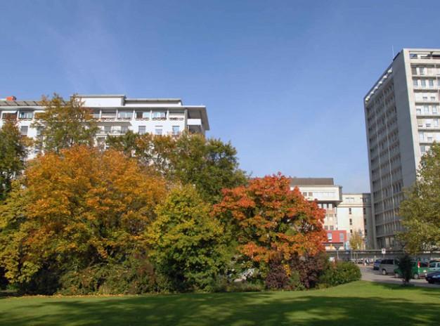 Клиника кантона Winterthur