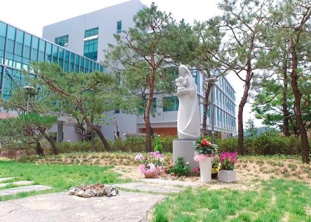 Медицинский Центр Католического Университета Тэгу