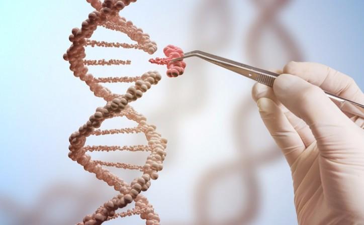Рак молочной железы: тест экспрессии гена помогает при выборе наиболее эффективной тактике лечения, Главная, Статьи