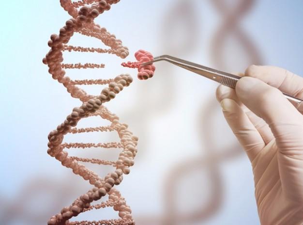 Рак молочной железы: тест экспрессии гена помогает при выборе наиболее эффективной тактике лечения