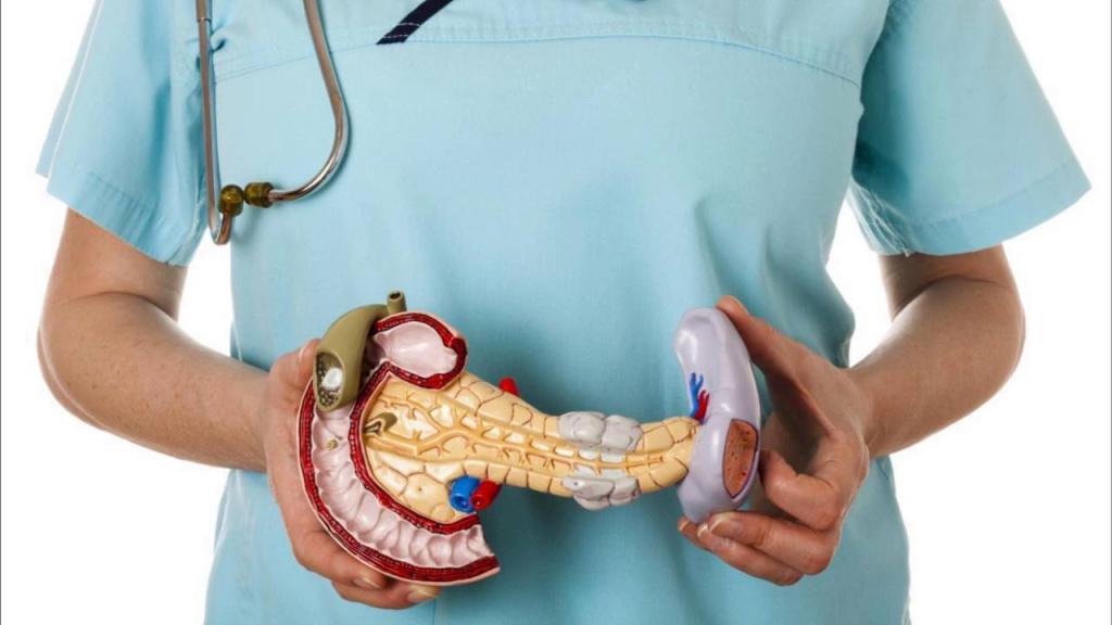 Рак поджелудочной железы: сколько живут? — Pacient.club